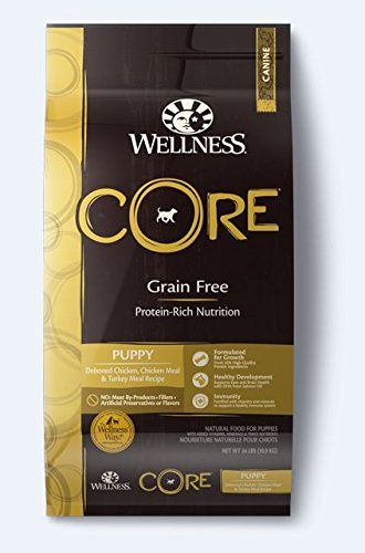 Wellness Core Grain Free Puppy Chicken And Turkey Natural Dry Dog
