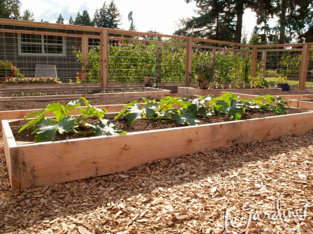 Priceless parsnips | Garden Design | Pinterest | Gardens, Garden ...