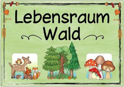 Ideenreise Themenplakat Lebensraum Wald Wald Grundschule Unterrichtsthemen Thema