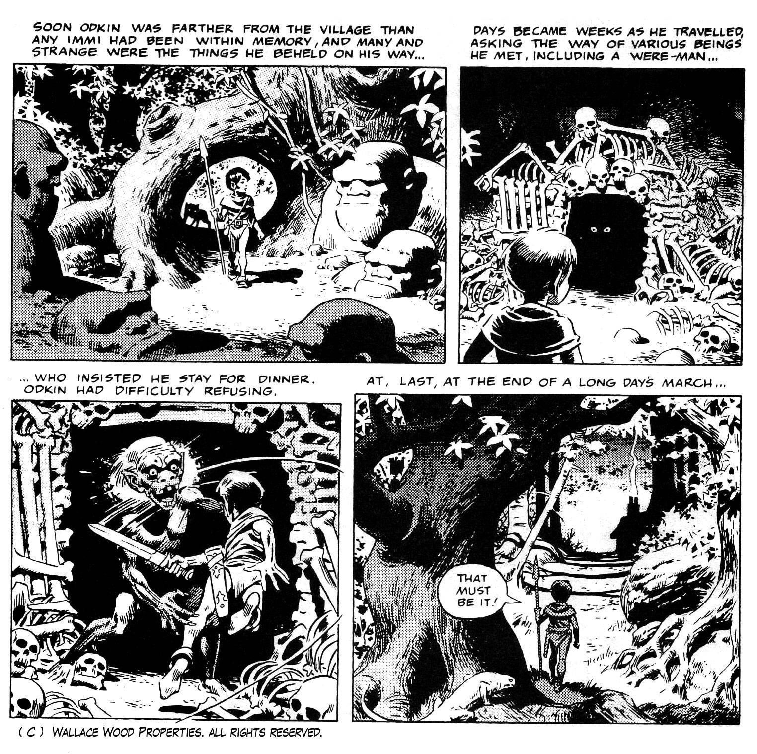 The Wizard King By Wally Wood