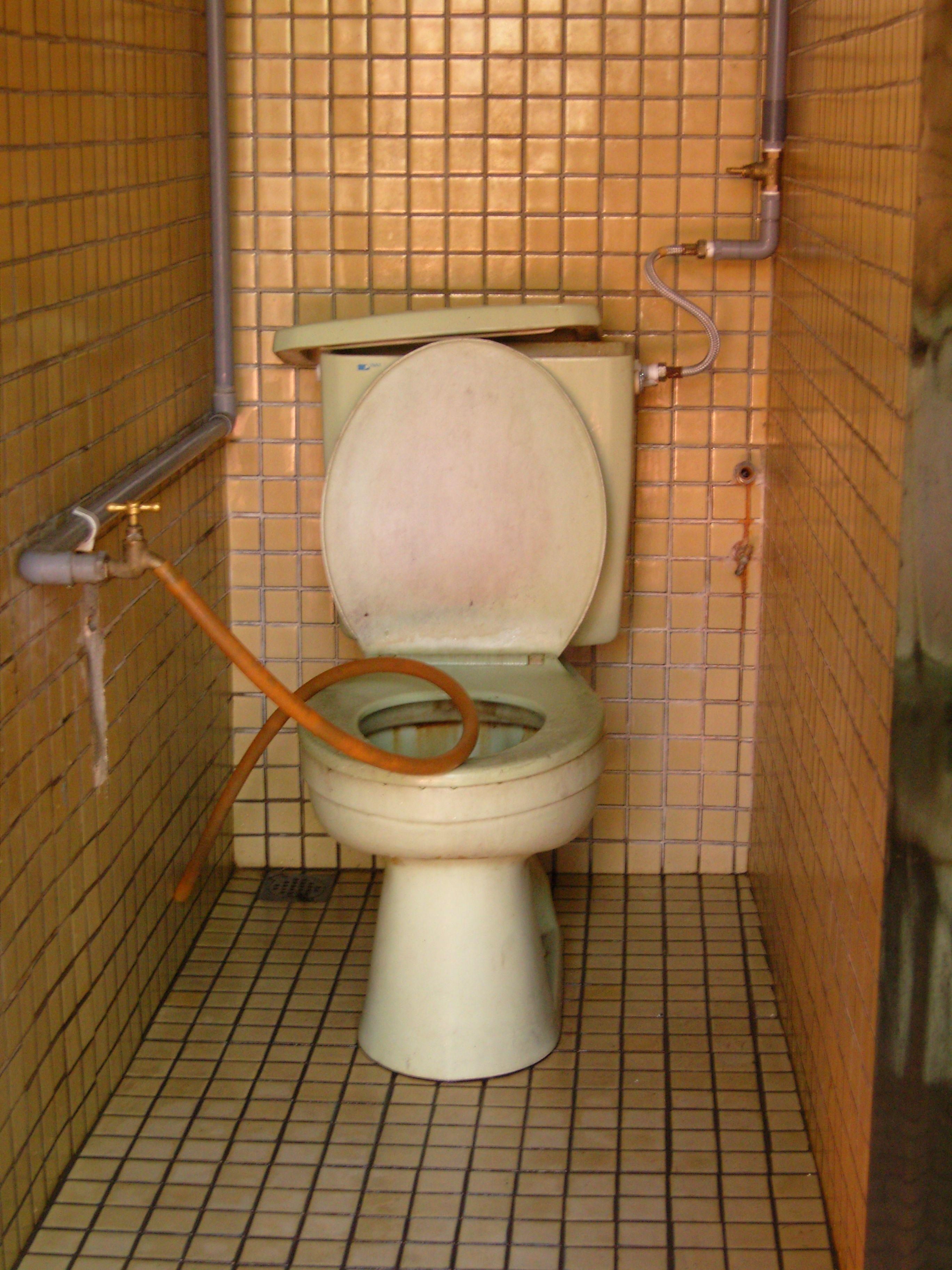 Malaysian toilet | Toilets of the World | Pinterest | Toilet