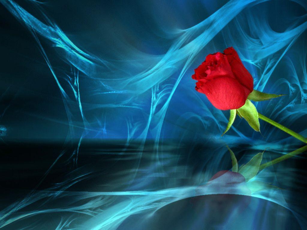 Fondos De Flores Wallpapers Hd Gratis: Fondos De Flores Rojas Para Fondo En Hd Gratis 15 HD