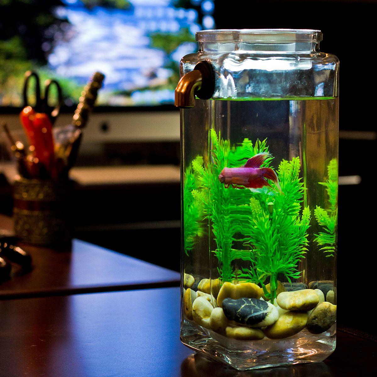 No Clean Aquarium Acrylic Fish Tank Freshwater Filter Uncommongoods