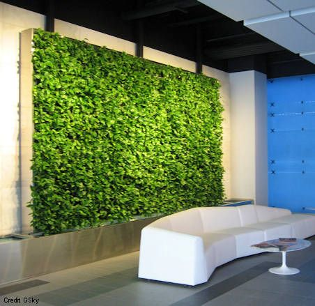 GSky Green Wall At Live Nationu0027s Head Office In Los Angeles, ...
