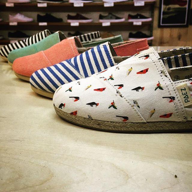 Ja tenim les noves @paezshoes per aquest #estiu2017 #paez #shoes #zapas #alpargatas #espardenyes #summer #beach #sun #sol #verano