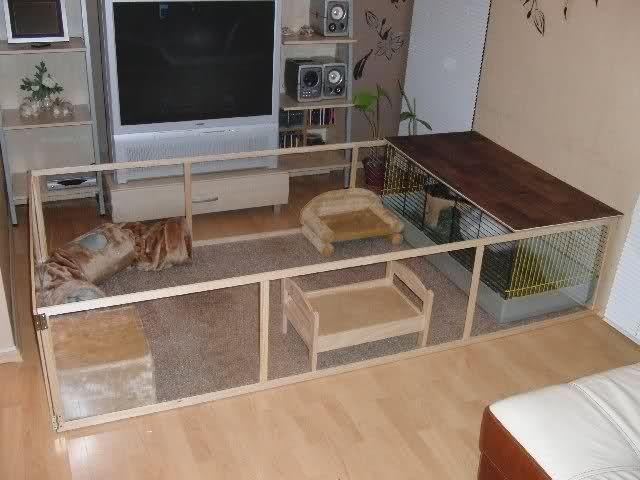 kaninchenzimmer reloaded kaninchen forum by. Black Bedroom Furniture Sets. Home Design Ideas