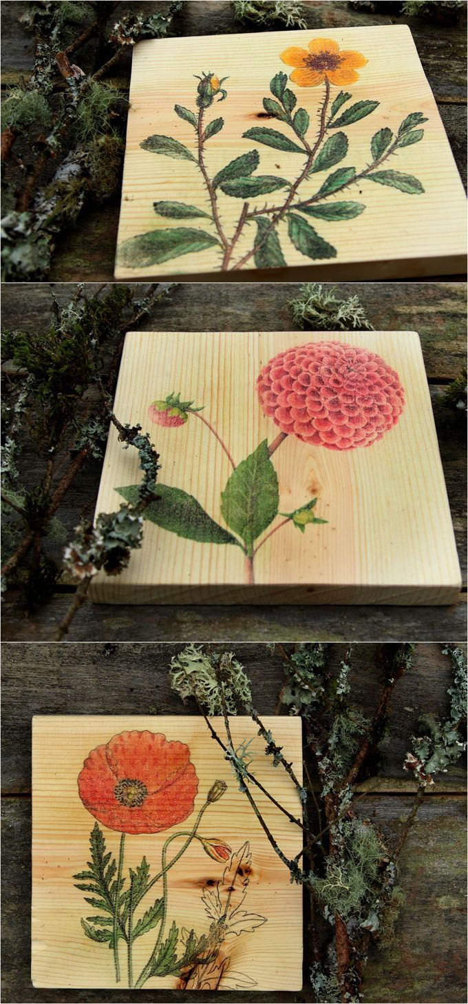 Diy wall art u how to transfer image to wood woods diy wall art