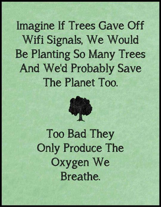 If Trees Gave Off Wi Fi Funny Quotes Quotes Words