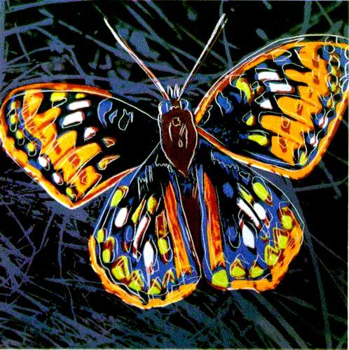 Big Bright Canvas Collection Andy Warhol.Butterfly Home Comforts http://www.amazon.com/dp/B00EXNZPLY/ref=cm_sw_r_pi_dp_E9kmub1F6ZBN7