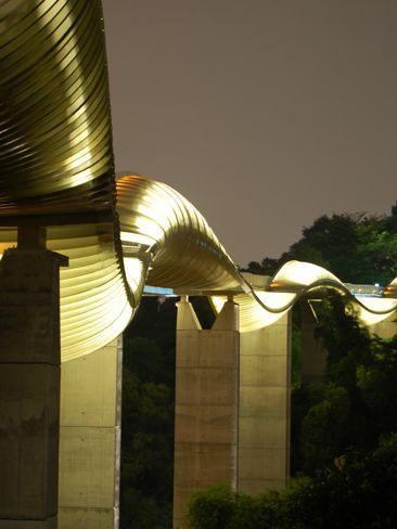 henderson waves pedestrian bridge singapore modern contemporary