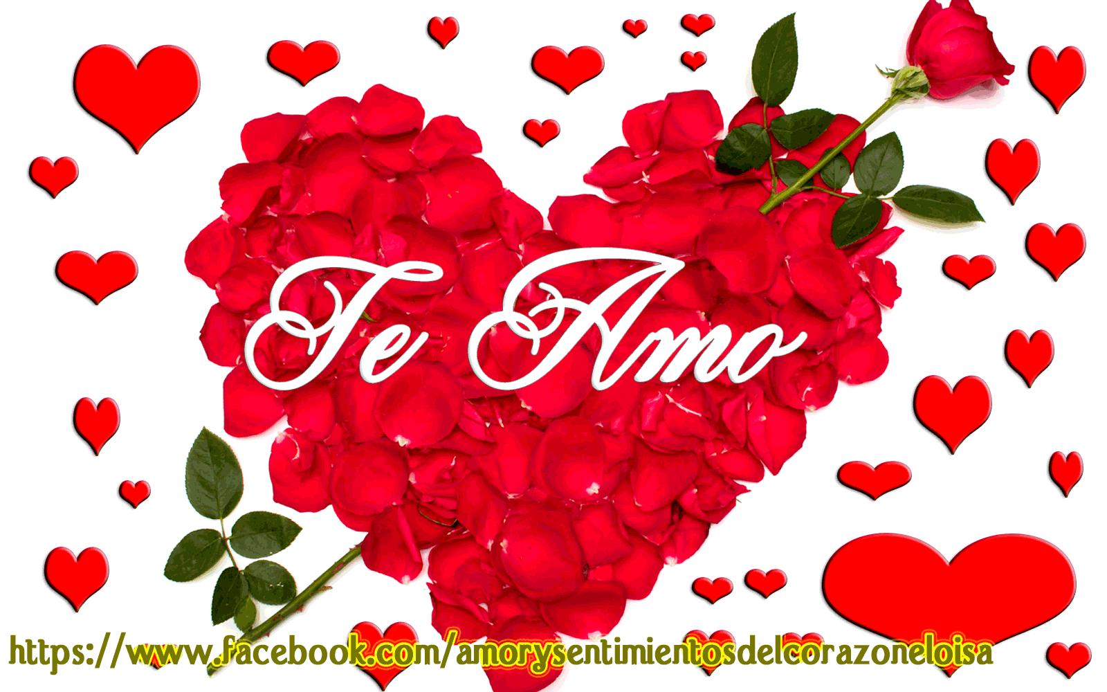 Amor Y Sentimientos Del Corazon Imagens De Amor Frases D Amor Amor