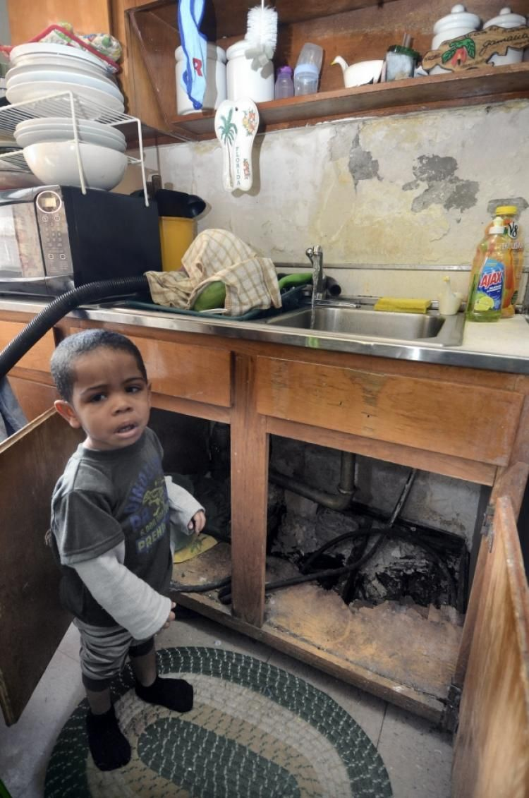 Nyc Housing Authority To Come Under Judicial Oversight Over Mold In Apartments In 2021 Nyc Judicial City Sign
