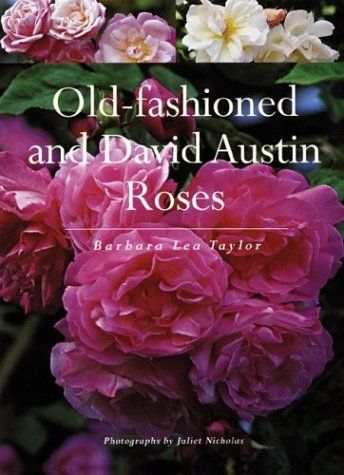 Old-fashioned and David Austin Roses by Barbara Taylor http://www.amazon.com/dp/1552978818/ref=cm_sw_r_pi_dp_MNXEvb0RJMNYK