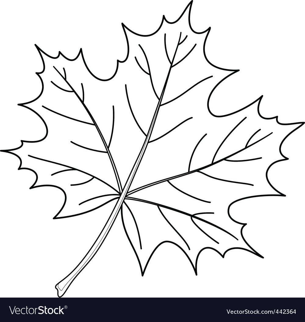 Pin By Mousumi Dutta On Designz Fall Leaves Coloring Pages Leaf Coloring Page Free Printable Coloring Pages