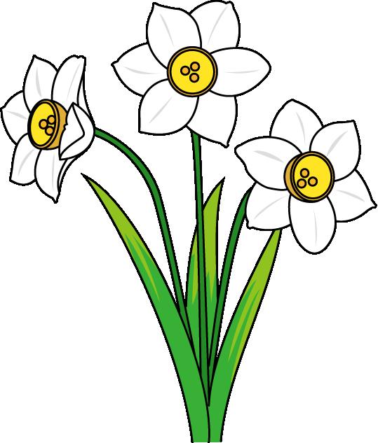 冬の花1 02 スイセン 花の素材 イラストポップ 冬 花 描画のためのアイデア 花 イラスト