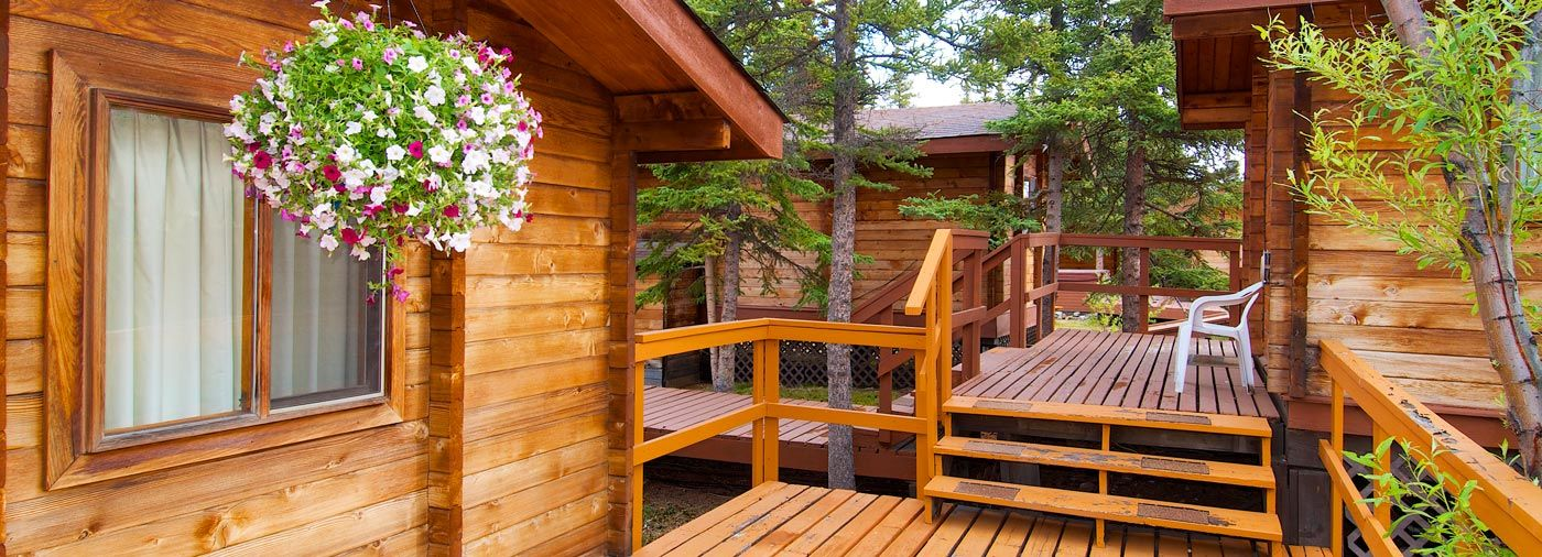 Beau Denali Cabins Deals | Alaska Denali Travel