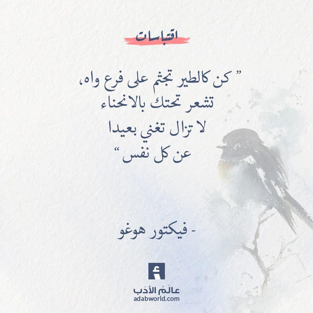 كن كالطير فيكتور هوغو عالم الأدب Beautiful Arabic Words Arabic Love Quotes Arabic English Quotes