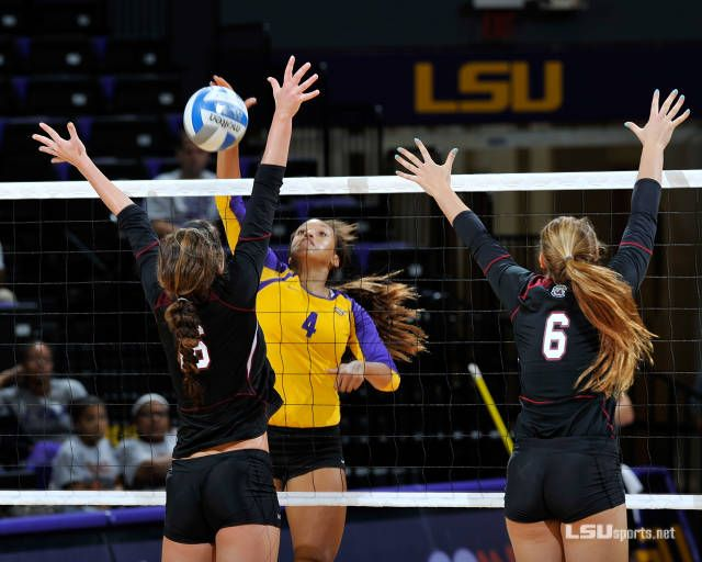 Lsu Volleyball Report Oct 29 Lsu Volleyball College Sports