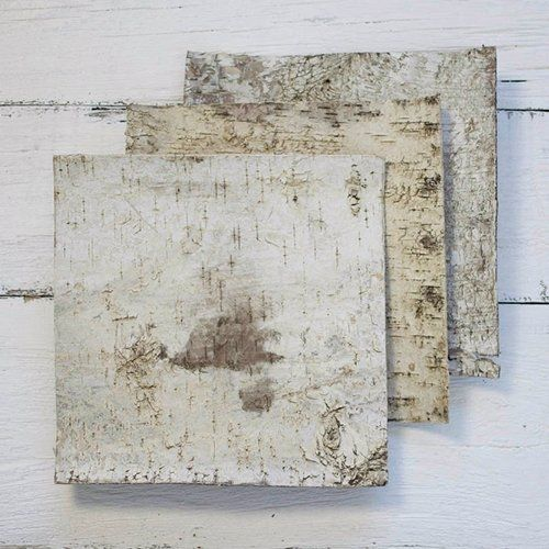 Natural Birch Bark Strips 12 X Inch Square Wood Sheets Set Of 6