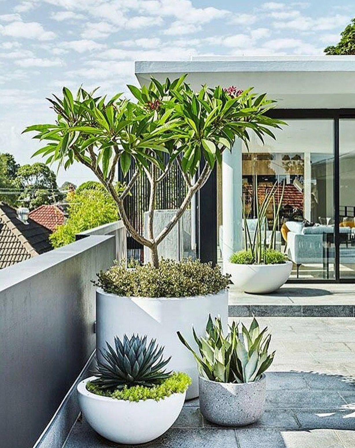 Best Modern Front Yard Landscaping Ideas 32 Home Decor Diy Design