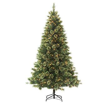 Kmart Com Spruce Christmas Tree Christmas Tree Sale Christmas Tree