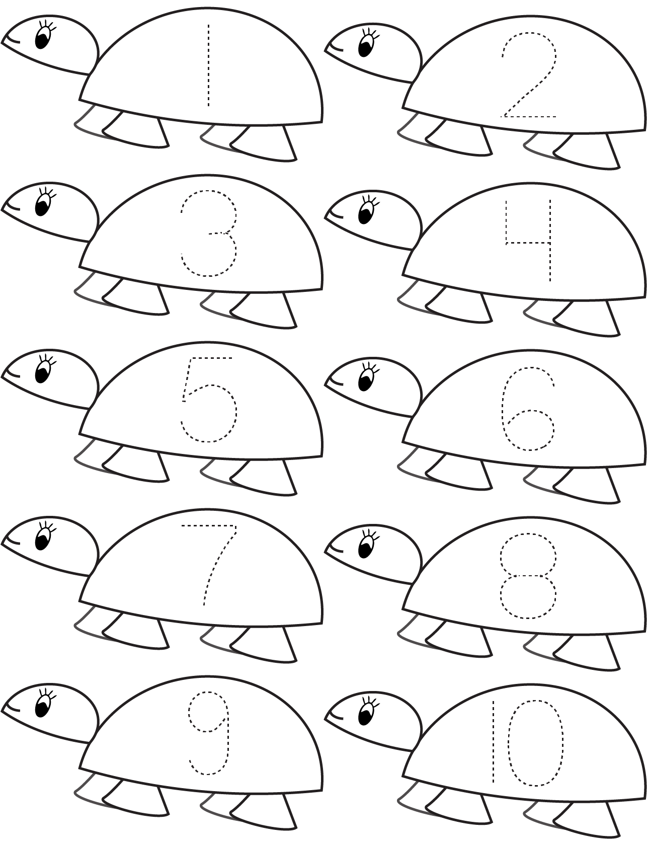 Turtle Worksheet Kindergarten