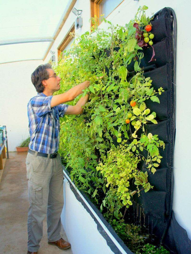 Ein vertikaler Garten selber bauen - Schritt für Schritt Anleitung - Garten, Haus & Garten, Wandverkleidung - ZENIDEEN