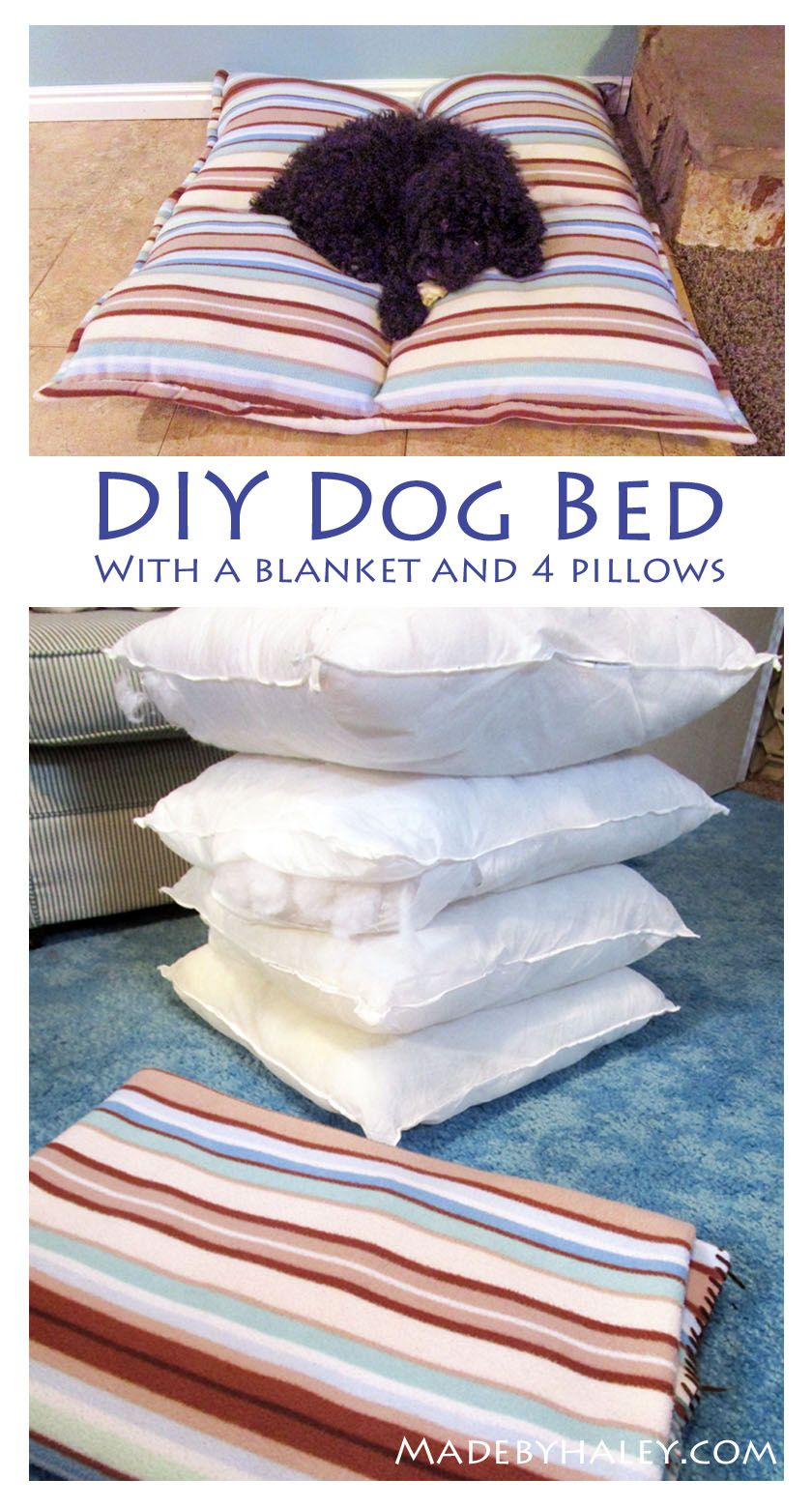 DIY dog bed out of an old blanket and throw pillows. So
