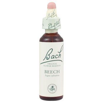 Bach Beech (1x20 ML)