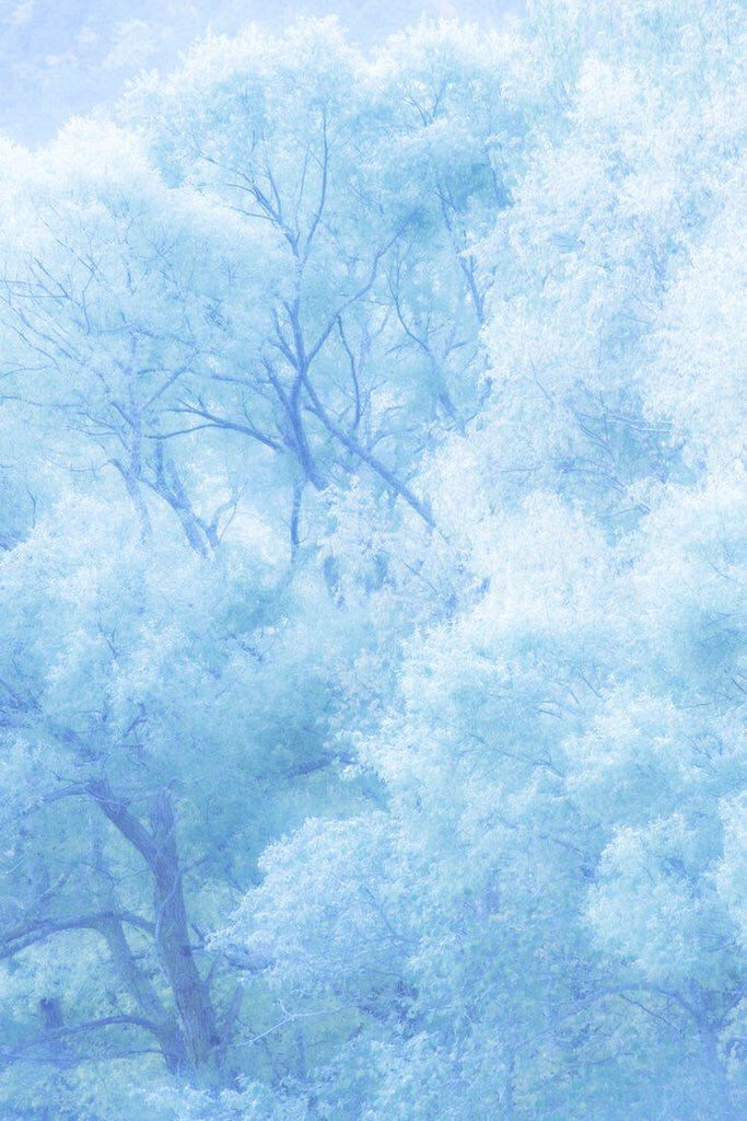 (89) Twitter Light blue aesthetic, Baby blue aesthetic