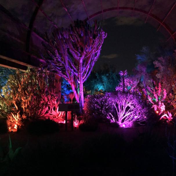 acc012436f5c1e313cd45565d40f9178 - Birmingham Botanical Gardens Lantern Festival 2019