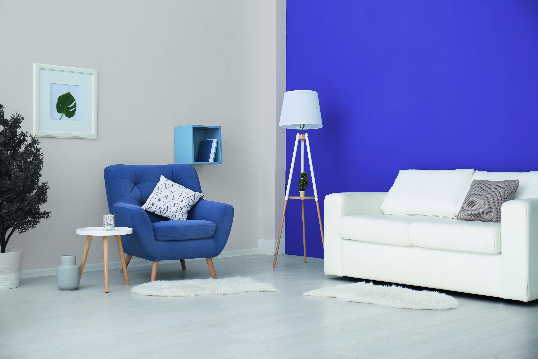 Vivid Violet & Moonlit Sky   Wall paint colors, Wall ...