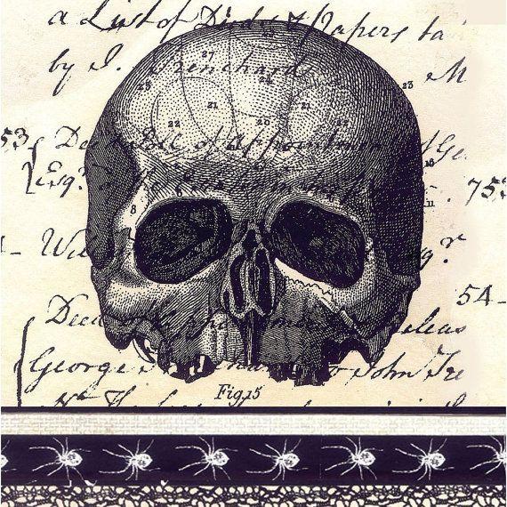 3 Mix Halloween Decoupage Paper Napkins Skull Gothic Paper