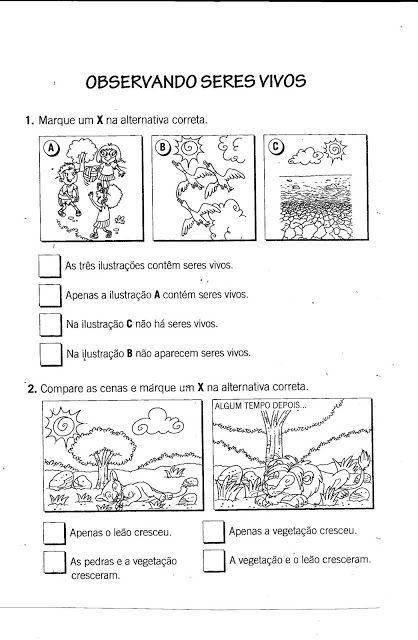 Espaco Professor Ciencias 1º Ao 5º Com Imagens Atividades De