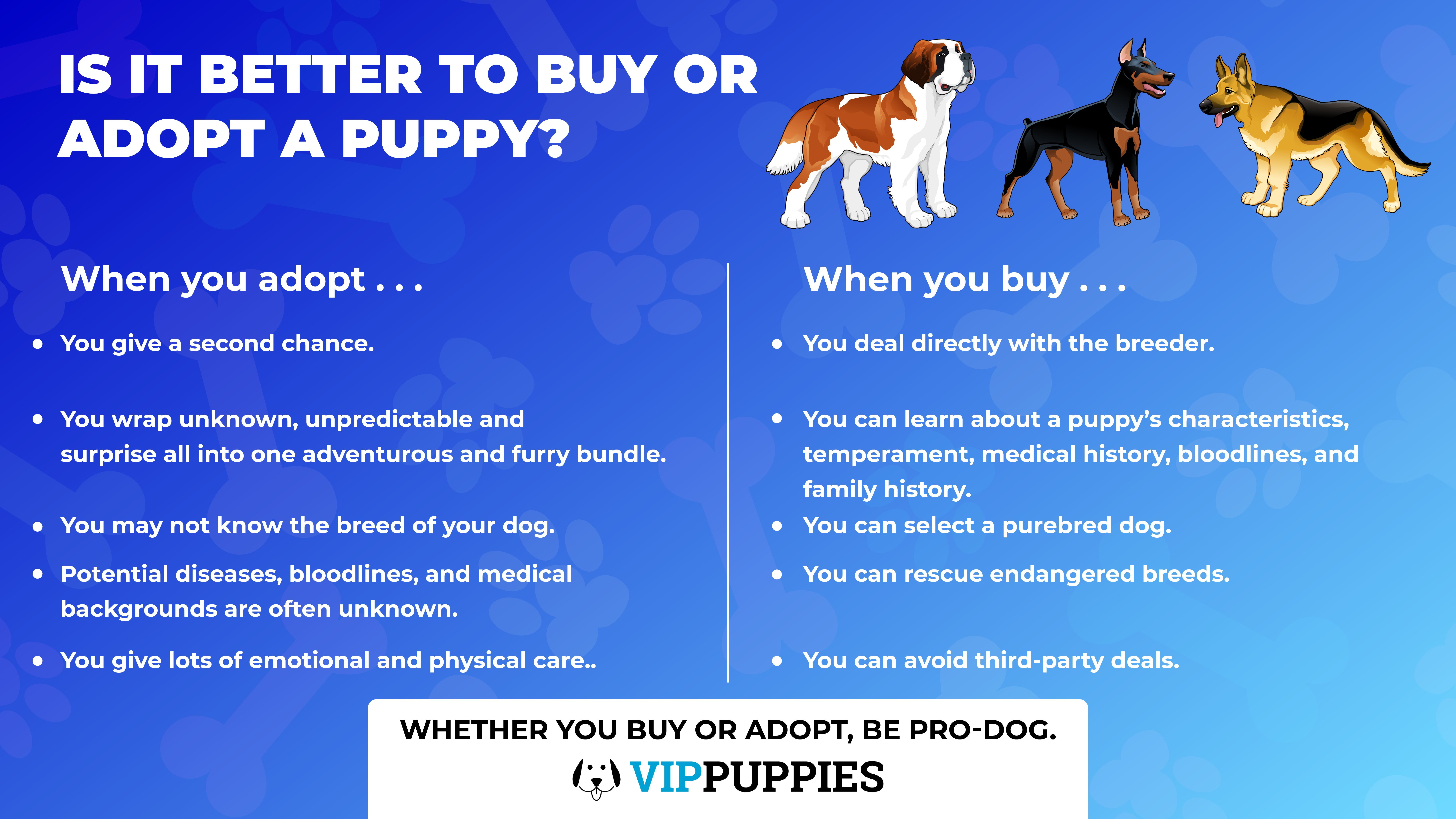 Adoption From A Shelter Vs Buying From A Breeder Which Is Pro Dog