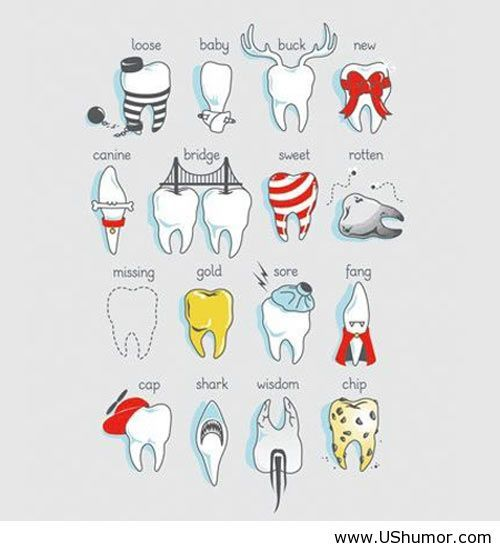 Many Moods Of Teeth Dental Jokes Dental Art Dental Fun