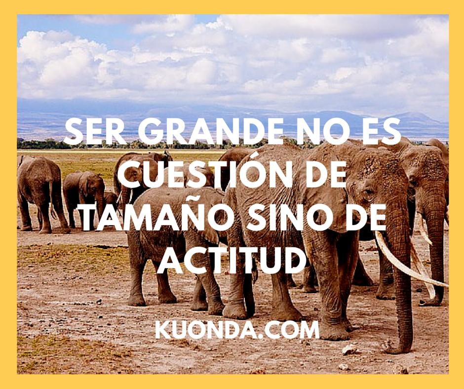 Ser Grande no es cuestión de Tamaño sino de ACTITUD. http://www.kuonda.com