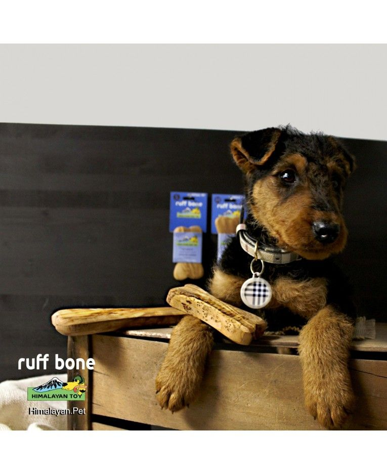 Is It A Chew Or A Toy Actually The Himalayan Ruff Bone Is All