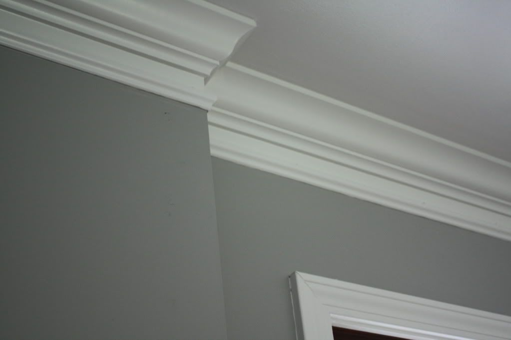 Behr Ashes For The Dining Room Trendy Living Rooms Moldings And Trim Living Room Paint