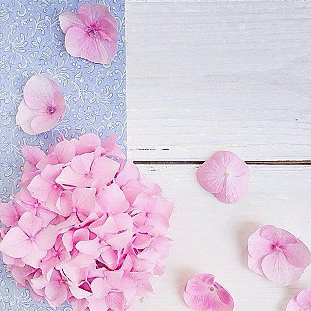 85 Likes 1 Comments صور تصاميم Rosie Pic 03 On Instagram خلفية من حساب A Aisha87 A Aisha87 A Ai Wallpaper Keren Flowers Wallpaper Backgrounds