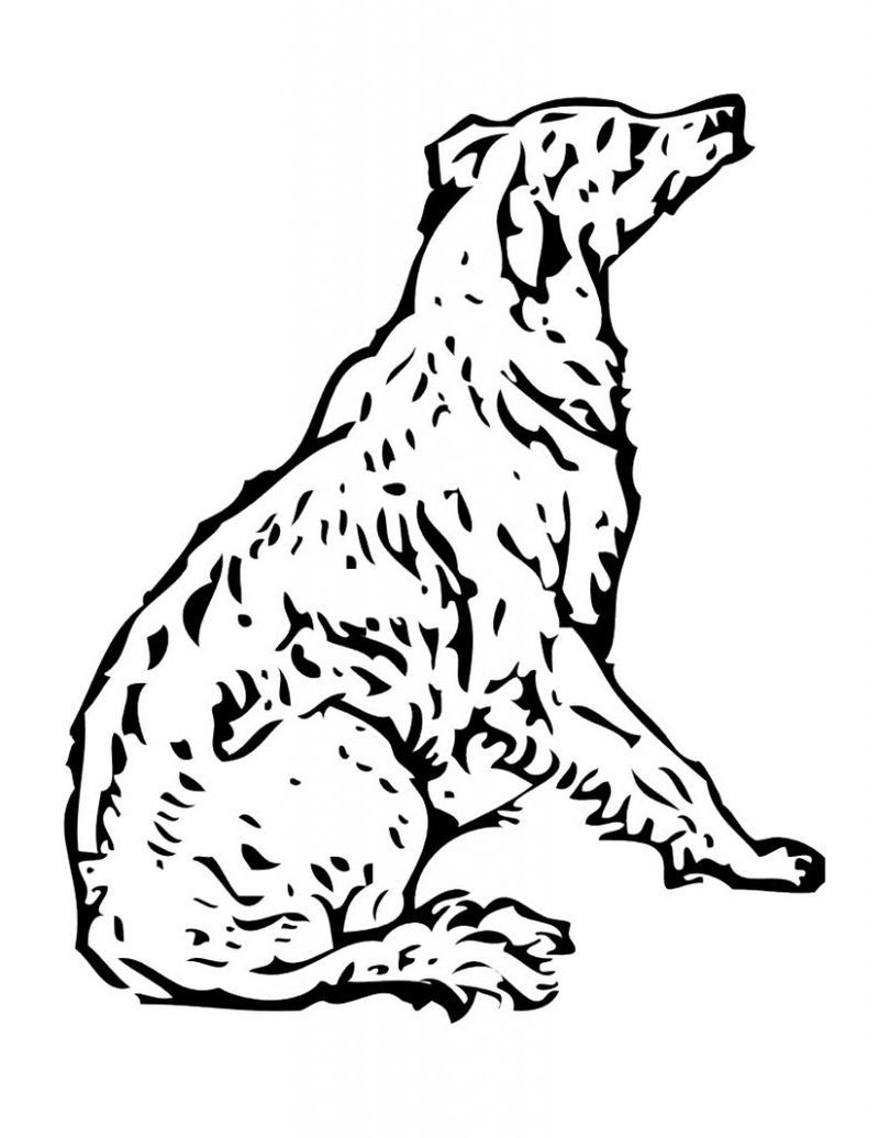 Printable Dog Coloring Pages Ideas For Kids Free Coloring Sheets Dog Coloring Page Animal Coloring Pages Horse Coloring Pages