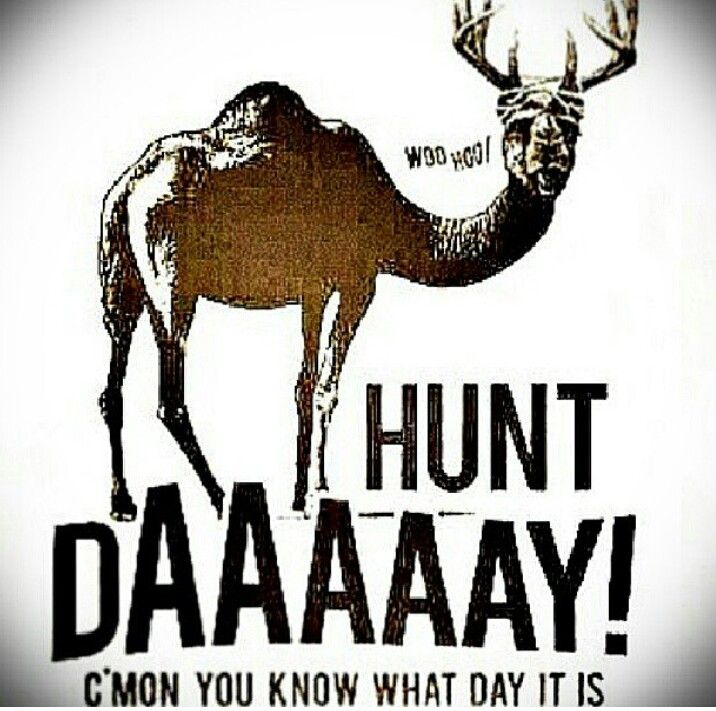 Tomorrow (or well today since It's after midnight) is the first day of archery season in VA! Good luck to all of the hunters!