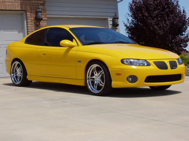 2004 Gto In Yellow Jacket With 19 Ccw 505a Gtos Cars Gto Gm Car