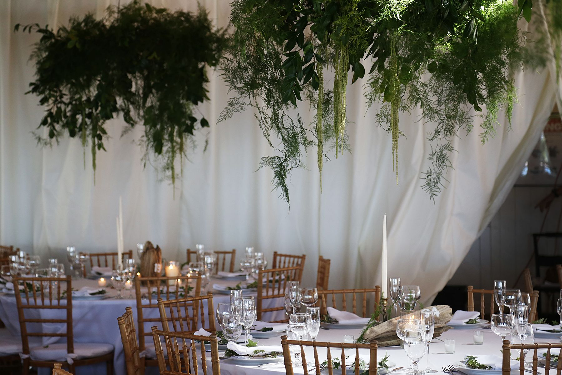 example of green hanging from tent - can we fake or real whichever is cheaper - mw  Weddings   Putnam & Putnam