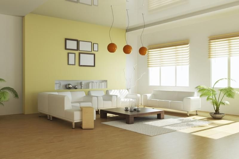 Living Room With Light Colors Hometriangle Design Ideas Pleasing Light Colored Living Rooms Design Decoration