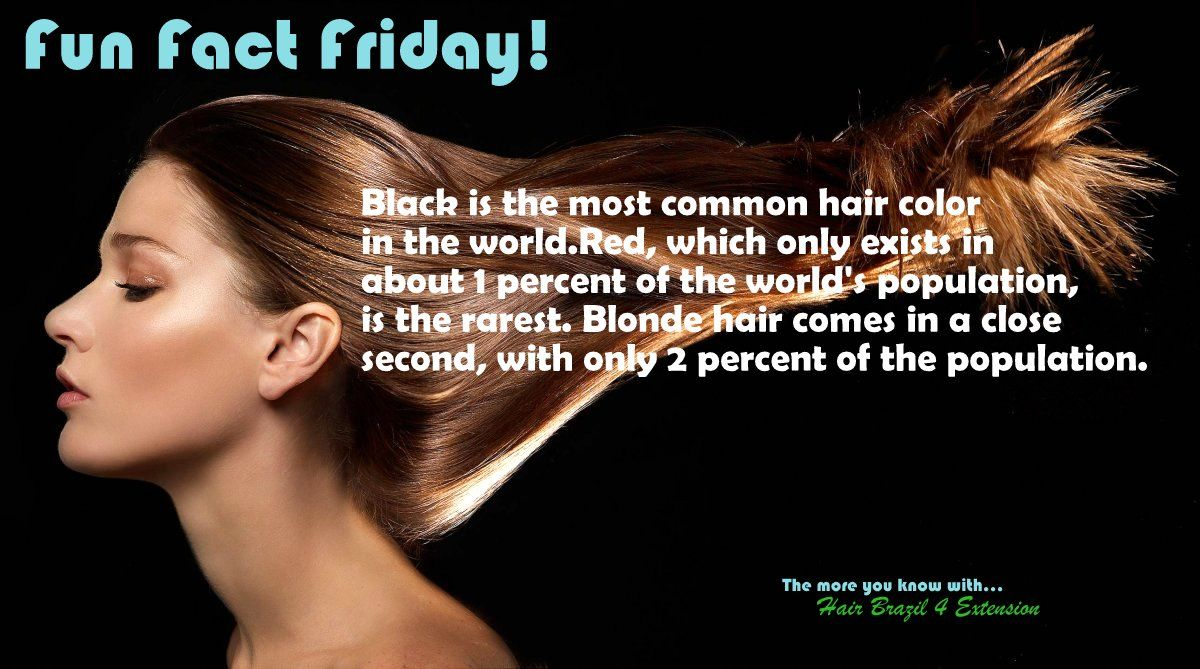 Pin By Hair Brazil 4 Extension On Places To Visit Most Common Hair Color Fun Fact Friday Fun Facts
