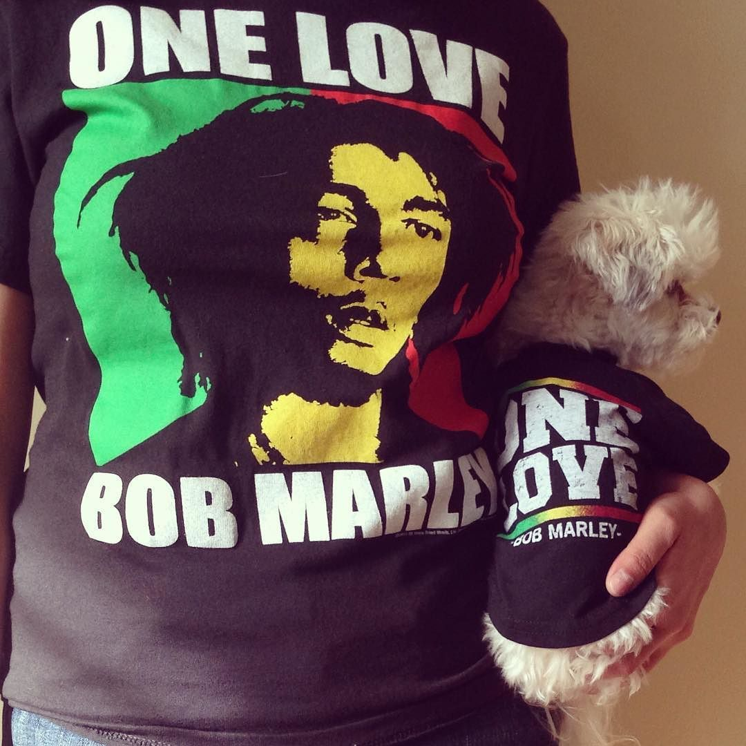 Me and Mommy are celebrating this legend's birthday today!  #legend #bobmarley #livelyupyourself #welovebobmarley #bobmarleysbirthday #bobmarleyforever #bandit #maltipoo #maltipoolove #instacute #dogstagram #rastadog #maltipoolovers #maltipoonation #yourdailypets #lacyandpaws #photorepost #adoringpets #onelove by bandithasmyheart