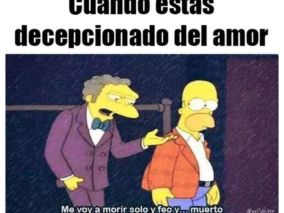 Cuando Estas Decepcionado Del Amor Memes Humor Funny