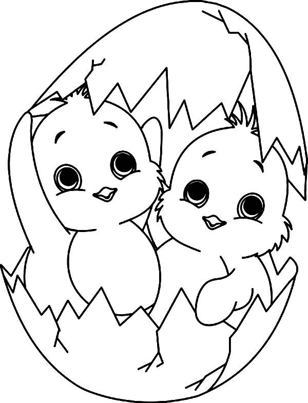 Line Drawing Of Baby Face : Baby chick a twin coloring page