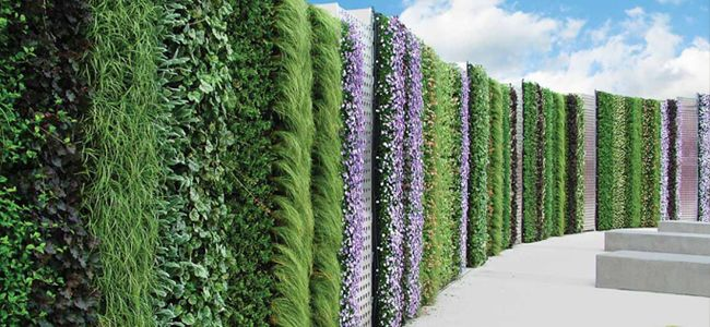 In Addition To Being A Productivity Booster, #livingwalls Can Act As Sound  Barriers In